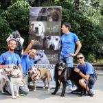 ABBANDONA LE GIUSTIFICAZIONI, NON LUI – Il Parco canile di Milano all'evento contro l'abbandono organizzato da OIPA a Milano