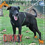 Dikky