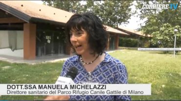 michelazzi-intervista