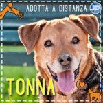 Tonna